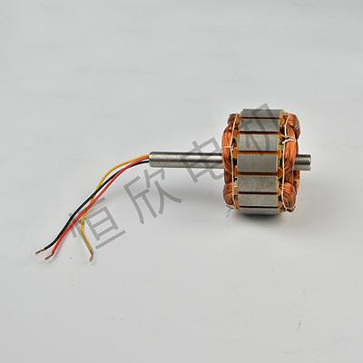 自动嵌线加工电机 HX-088
