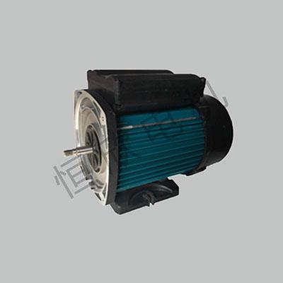 浴缸泵电机 HX-078