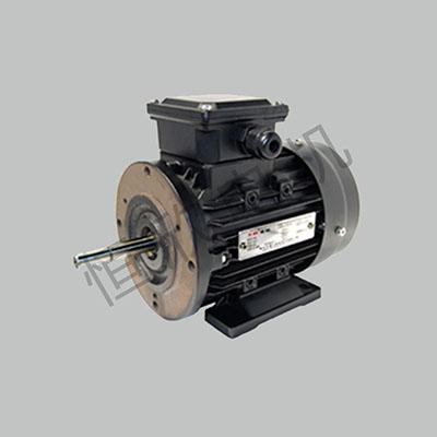 高温不锈钢轴电机 HX-061