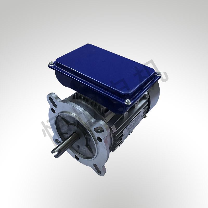 YL系列双值电容单相电机