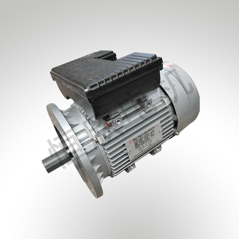 YL系列双值电容单相电机 HX-055