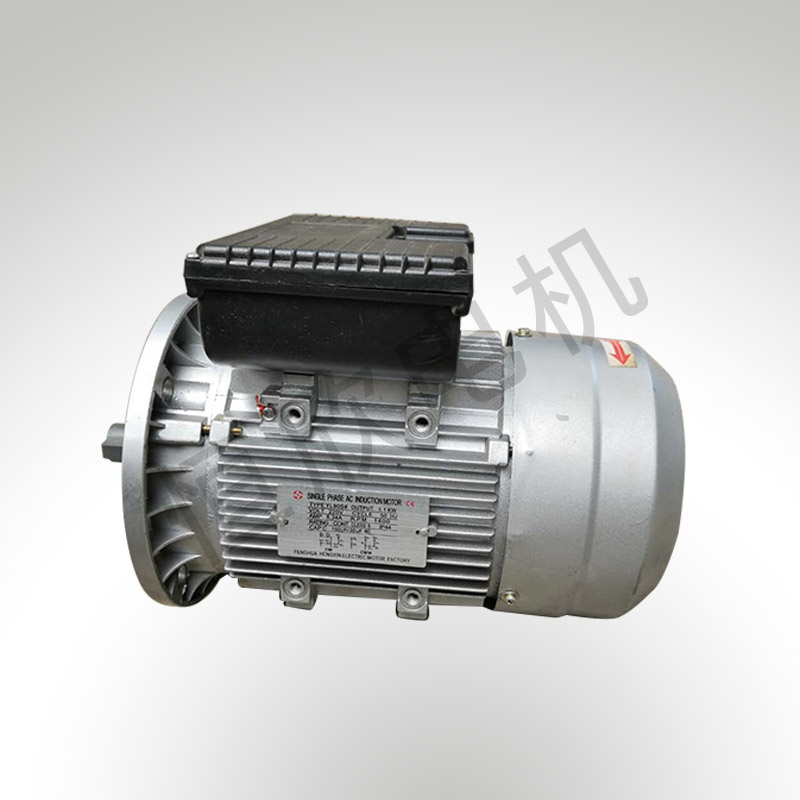 YL系列双值电容单相电机 HX-056